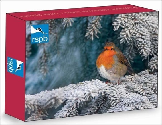 woodmansterne - RSPB Christmas 9 cards (3 designs)